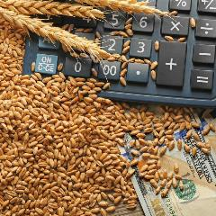 Wheat and Calculator Image